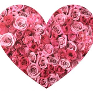 pink-rose-heart